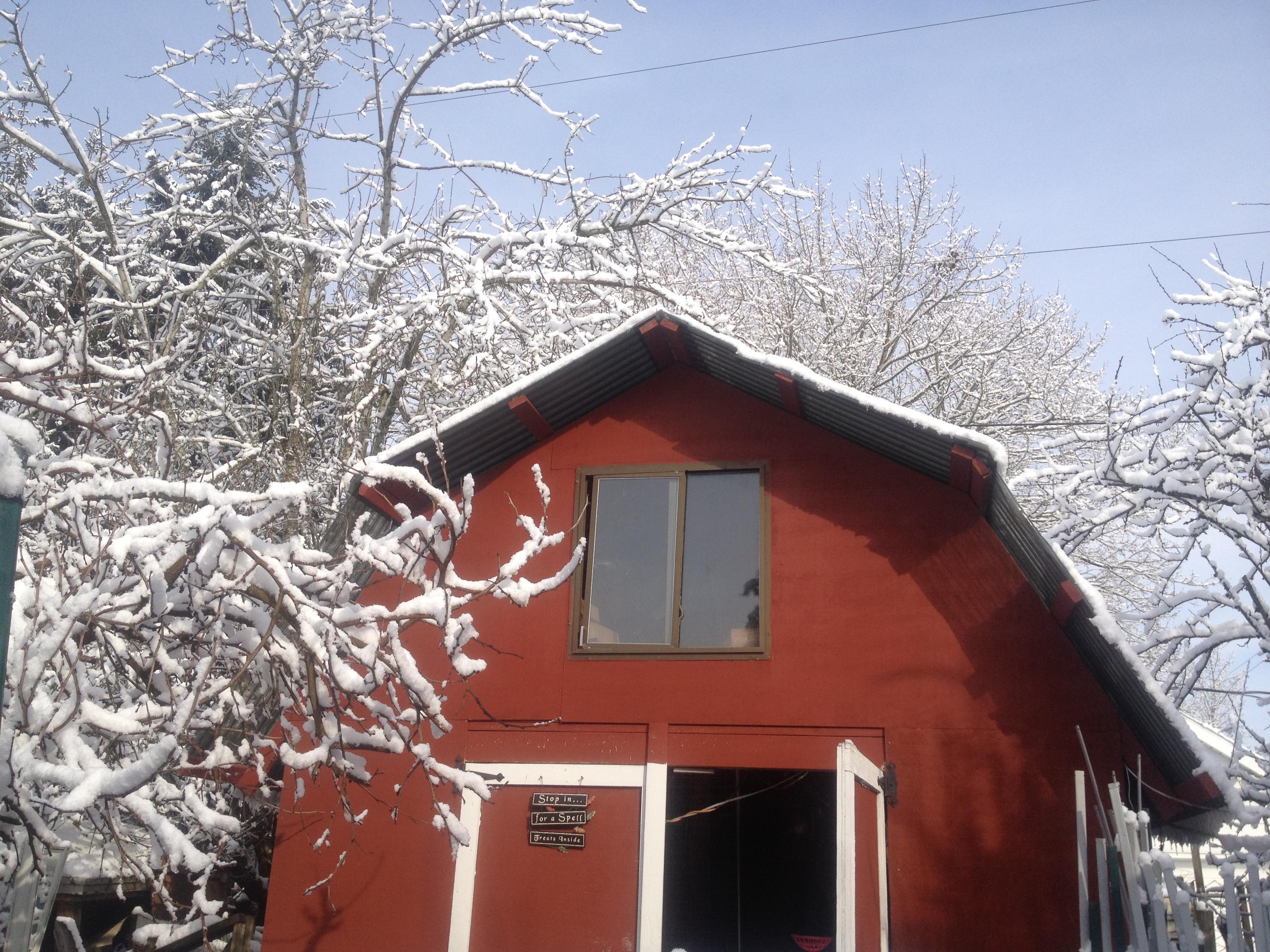 Barn Snow 2018-0221